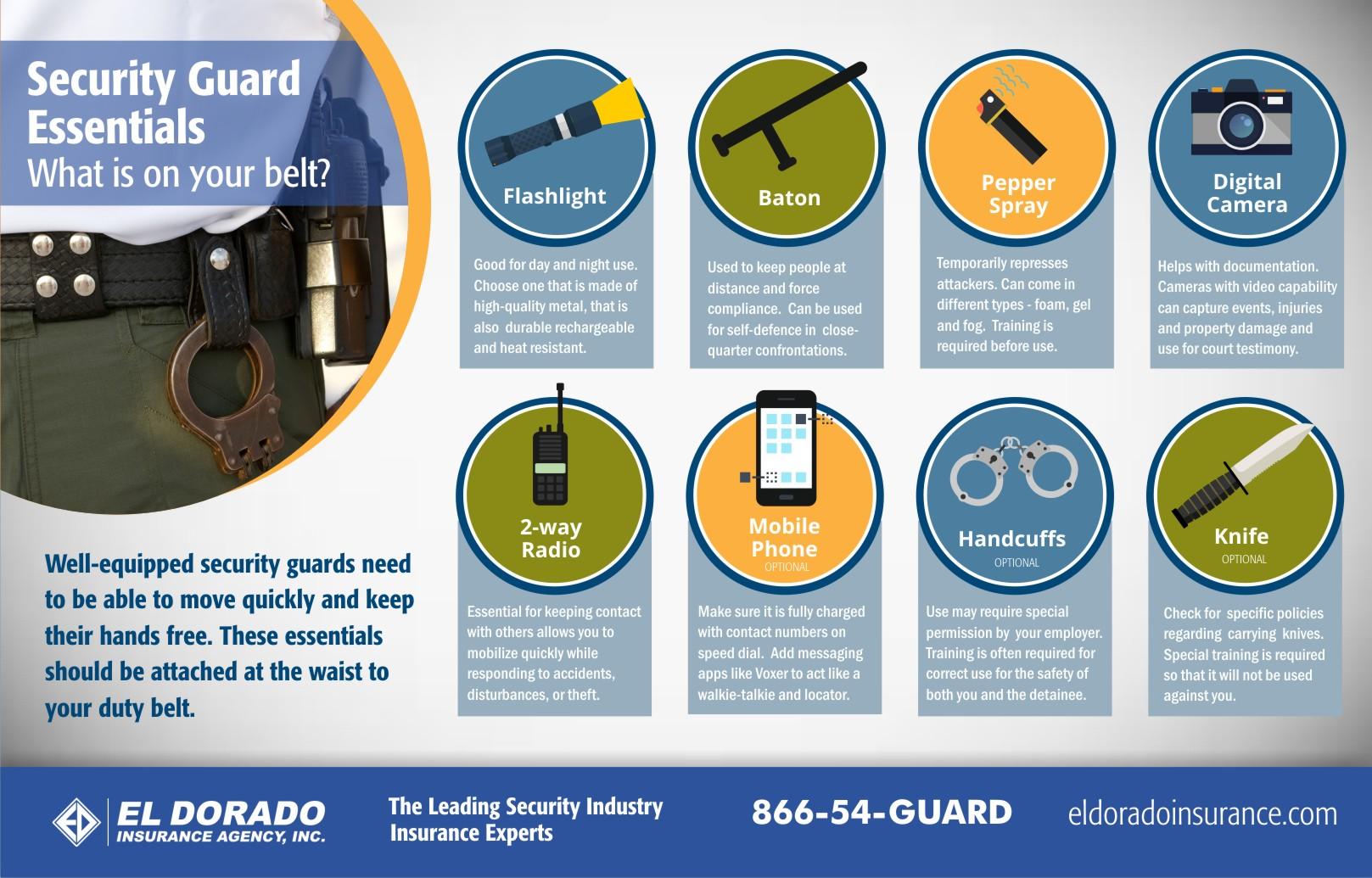 ed_infographic_security_essentials_belt_2016